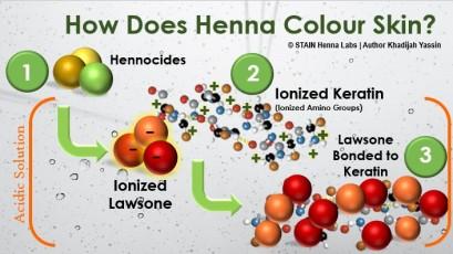 How Henna Works